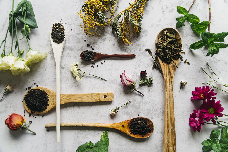 plantes médicinales et naturopathie
